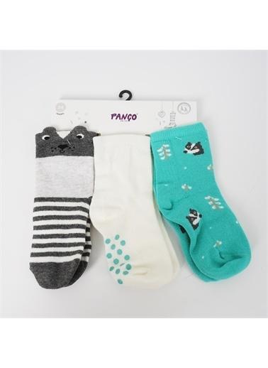 Panço Erkek Bebek 3 lü Çorap 18236004108 Renksiz